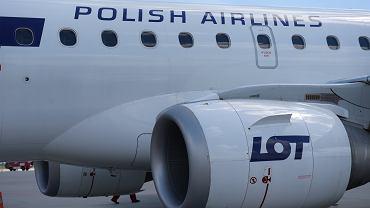Samolot LOT-u / zdjęcie ilustracyjne