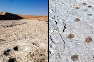 Arabia Saudyjska. Znaleziono odciski stóp sprzed 120 tys. lat. Najstarsze poza Afryką