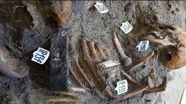 Szczątki polskiego obrońcy znalezione na Westerplatte