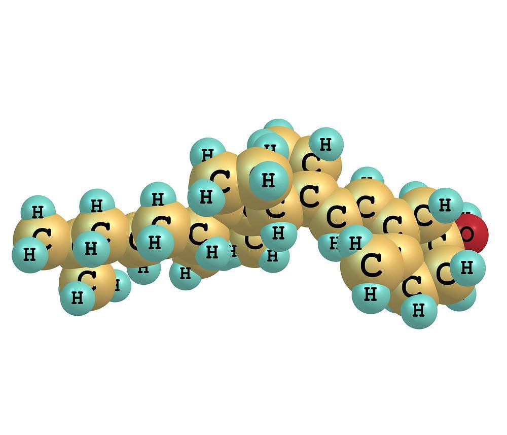 Hydroksyapatyt to tak zwany uwodniony fosforan wapnia, czyli minerał wchodzący w skład kości.