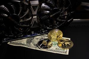 Bitcoin nie ma dobrej passy. Padł ofiarą tweetów Elona Muska i jest obwiniany o wzrost cyberprzestępczości