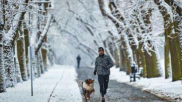 Pogoda. Zima. Zdjęcie ilustracyjne