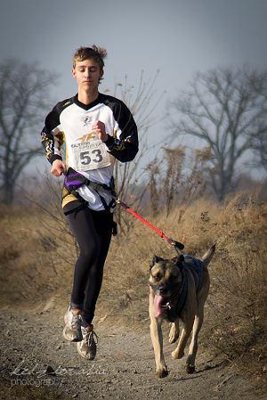 Canicross czyli bieganie z psem