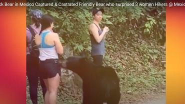 Zrobiła sobie selfie z niedźwiedziem. Zwierzę zostało wykastrowane