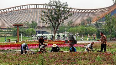 Zielone expo w Pekinie 2019.