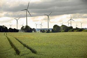 Ministerstwo Energii przeprasza się z wiatrakami. Zmiana kryteriów przyznawania zgód na nowe inwestycje