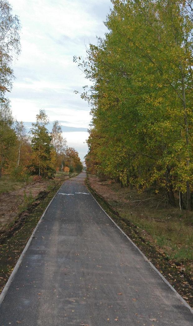 Zdjęcie numer 7 w galerii - Nowa ścieżka dla rowerzystów biegnie przy Motoarenie, bajeczne kolory wokół [ZDJĘCIA]