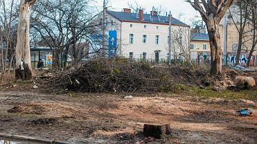 Wycinka drzew przy ul. Opackiej. Kolidowały z wjazdem na teren budowanego osiedla