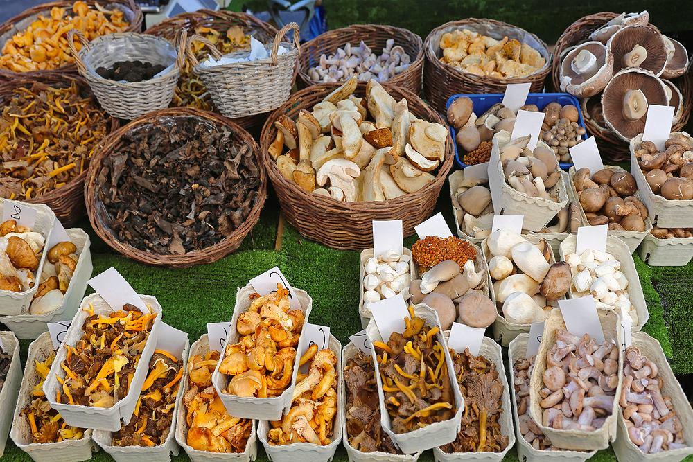 Grzyby jadalne to takie, które odpowiednio przyrządzone mogą być spożywane przez człowieka i nie powodują żadnych dolegliwości. Większość rodzajów grzybów jadalnych w Polsce jest zbierana w lasach, a tylko niektóre rodzaje są uprawiane,