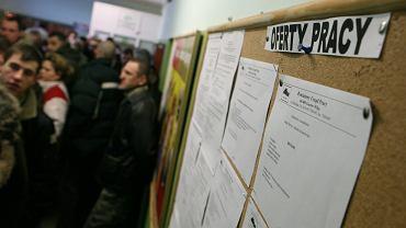 14.01.2009, Urząd Pracy w Gorzowie Wielkopolskiej.