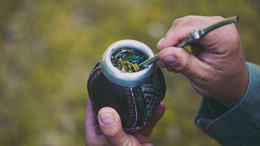 Yerba mate to herbata, która w ostatnich latach zyskuje coraz większą sławę.