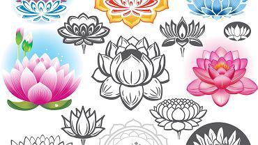 Kwiat lotosu - poznaj jego znaczenie.