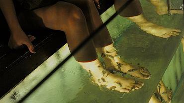 Według brytyjskich ekspertów fish manicure może być niebezpieczny.