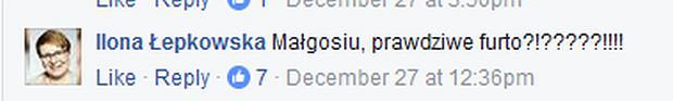 Komentarz Ilony Łepkowskiej