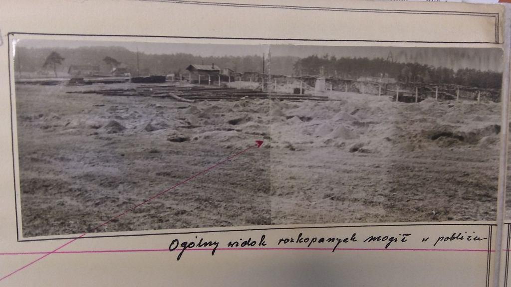 Bełżec 1958 r. Widok na część pola, na którym funkcjonował obóz zagłady. Na pierwszym planie groby rozkopane przez poszukiwaczy złota. Po lewej stronie państwowy skład drewna (fot. Archiwum IPN )