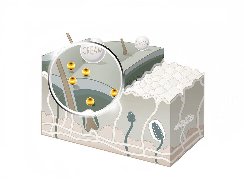 Korneometr to aparat służący do pomiaru stopnia nawilżenia skóry