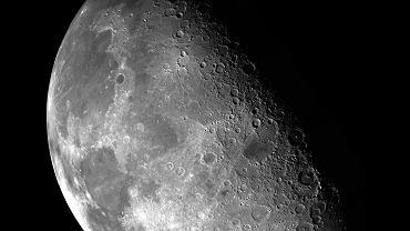 NASA zaprezentowała zespół Artemis. Jego członkowie polecą na Księżyc
