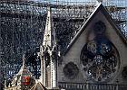Do odbudowy Notre Dame może być potrzebny polski cieśla