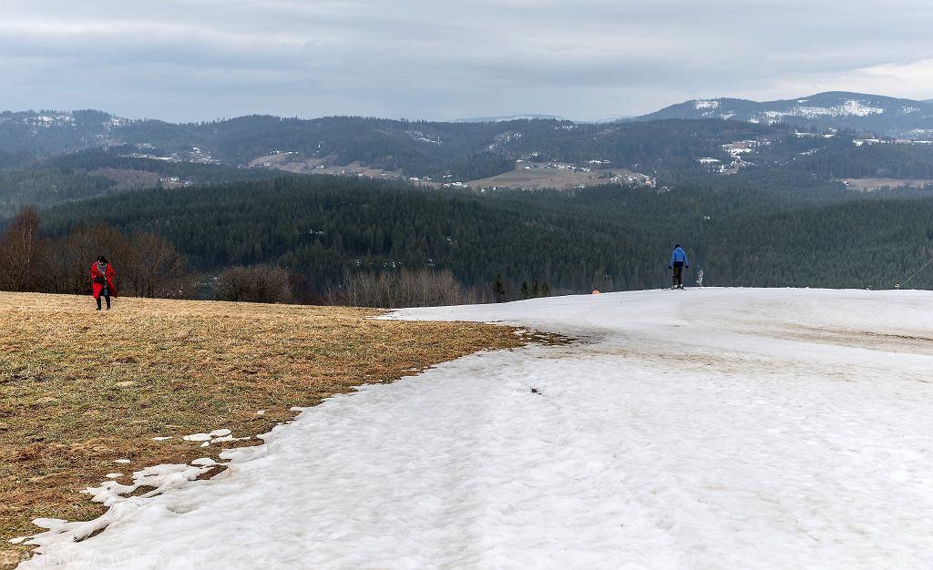 Pogoda. To była najcieplejsza i najmniej śnieżna zima od 240 lat (zdjęcie ilustracyjne)