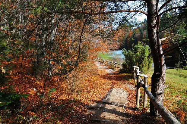 Polskie góry na jesień: Pieniny / shutterstock