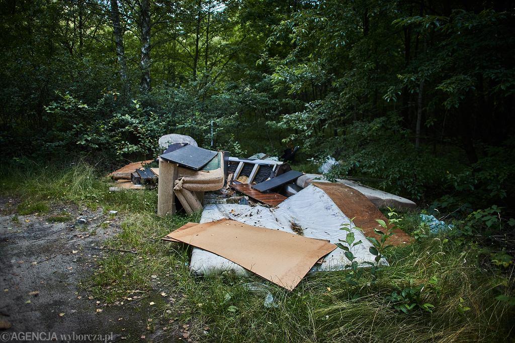 Dzikie wysypisko śmieci (zdjęcie ilustracyjne)