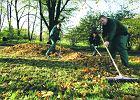 Jesienne prace w ogrodzie