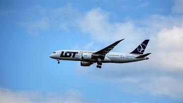 Samolot PLL LOT (zdjęcie ilustracyjne)