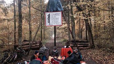 Puszcza Białowieska. Blokada wywózki drewna