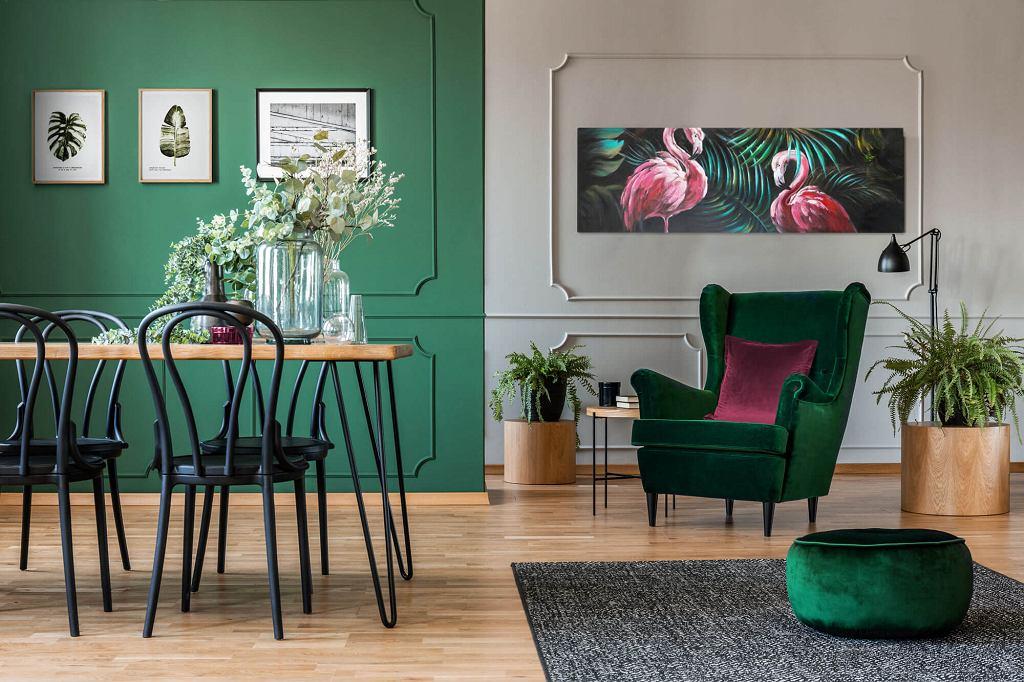 Zielony kolor w aranżacji salonu