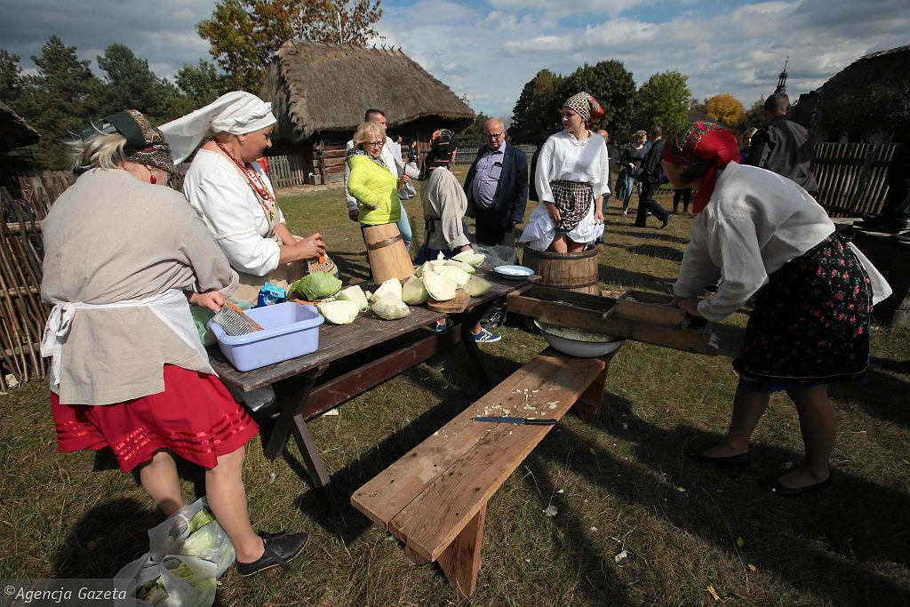 Jak należy przygotować kapustę do kiszenia demonstrowały panie Koła Gospodyń Wiejskich ze wsi Występy (gm. Krasocin)