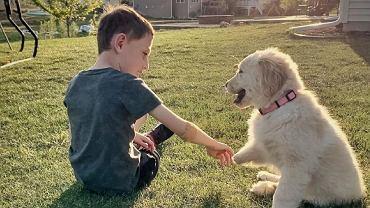 Chłopiec z asymetrią kończyn przygarnął psa z taką wadą