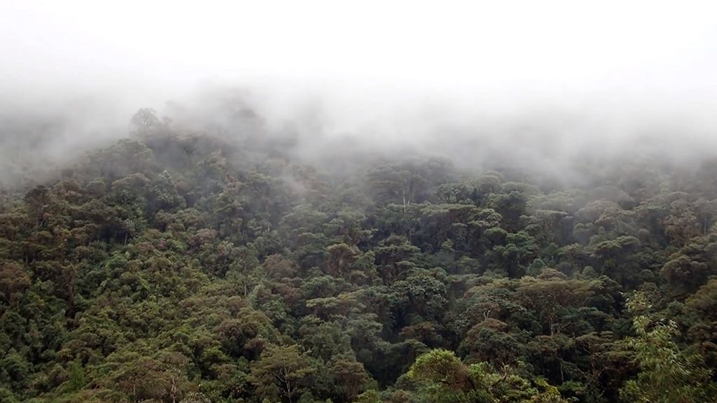 Dolina Sibundoy w Kolumbii