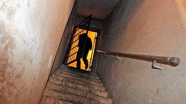 Piwnica. Zdjęcie ilustracyjne