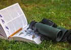 Książki o ptakach. Publikacje, które zdobędą serca miłośników świata przyrody