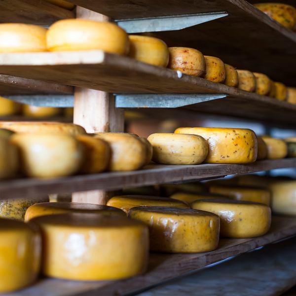Sery dojrzewające. Czym się różnią i jak skomponować idealną deskę serów?