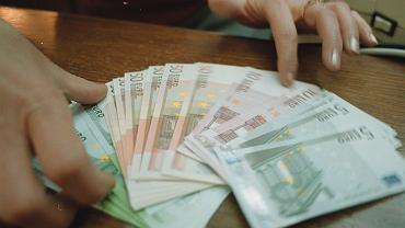 Próba przemytu 650 tys. euro do Polski