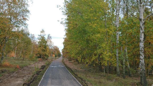 Zdjęcie numer 5 w galerii - Nowa ścieżka dla rowerzystów biegnie przy Motoarenie, bajeczne kolory wokół [ZDJĘCIA]