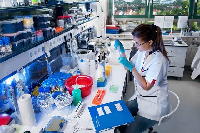 Obok krwi pobranej od pacjenta do badania potrzebne są próbki pochodzenia zwierzęcego