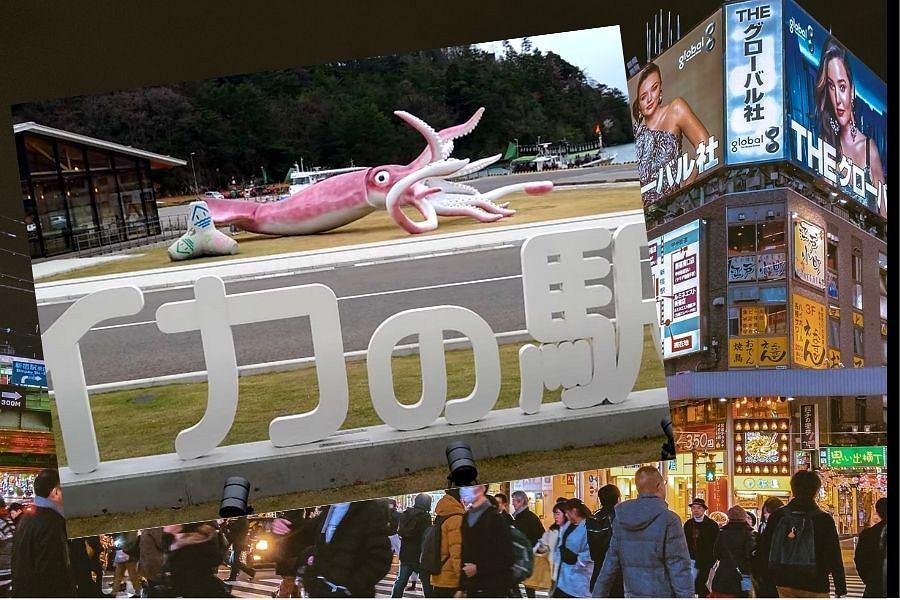 Gigantyczna kałamarnica w Japonii