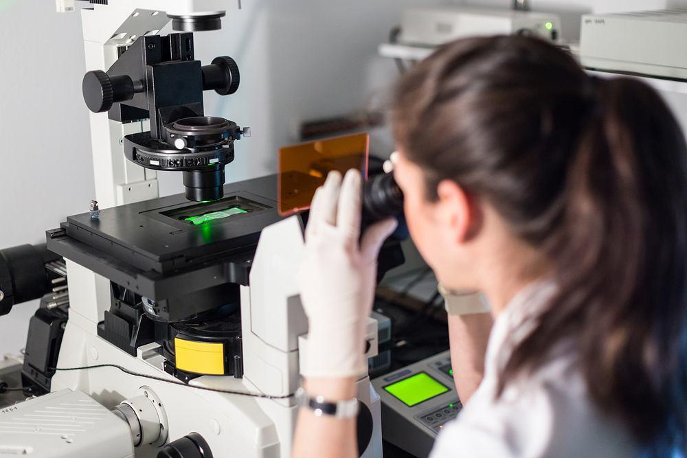 Naukowcom z Ohio udało się wyhodować w laboratorium przełyk (zdjęcie ilustracyjne)