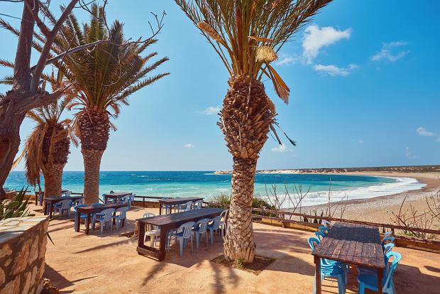 Dzika plaża Lara na Cyprze
