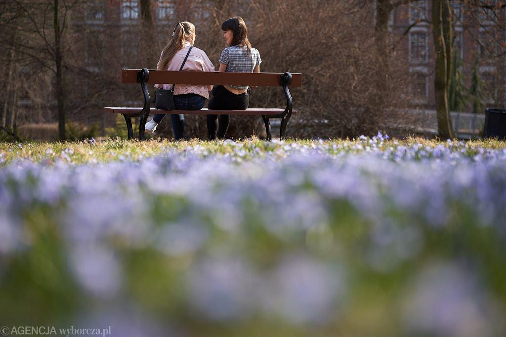 Wiosna w parku (zdjęcie ilustracyjne)