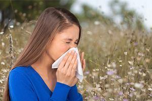 Kichanie to nie jest - najprawdopodobniej - objaw zakażenia koronawirusem. Przed nami sezon na alergie