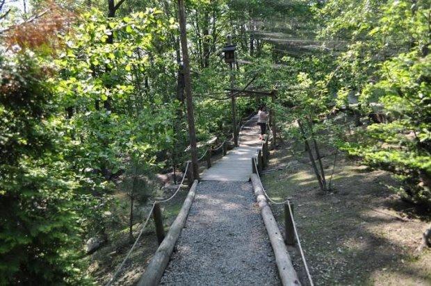 Ścieżka w Leśnym Parku/ Fot. www.facebook.com/lesnypark