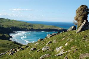 Podróż do Nowej Zelandii: tam wszystko jest inne