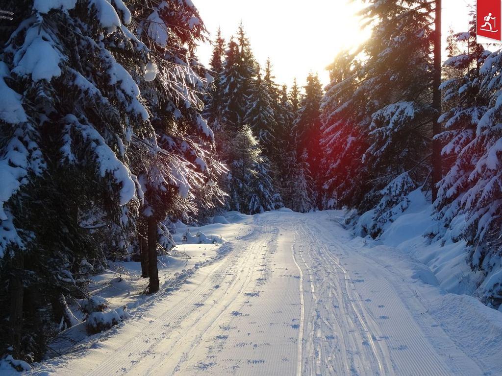 Gdzie są najlepsze trasy do biegania na nartach w Polsce?