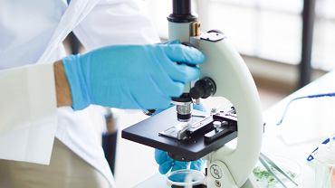 Wyniki badań wykazały, że bakteria jamy ustnej ma wpływ na rozwój raka jelita grubego