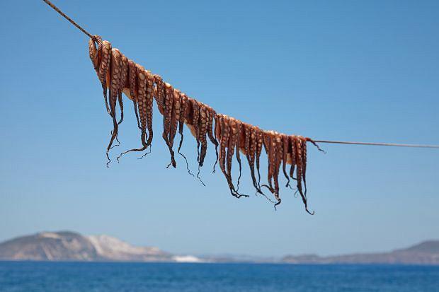 Sigha, sigha, czyli grecka wyprawa kulinarna w rytmie slow