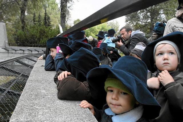 Dzieci w zoo. Co robić, gdy się zgubią? Zoo ma na to patent