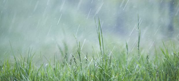 Plastik leci już nawet z nieba. Naukowiec zbadał próbki wody deszczowej i odkrył w nich mikroplastik